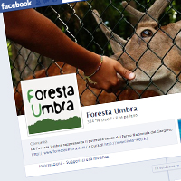<strong>FORESTA UMBRA</strong><br/>&raquo; pagina Facebook